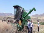 آغاز برداشت کلزا در مزارع شهرستان خداآفرین