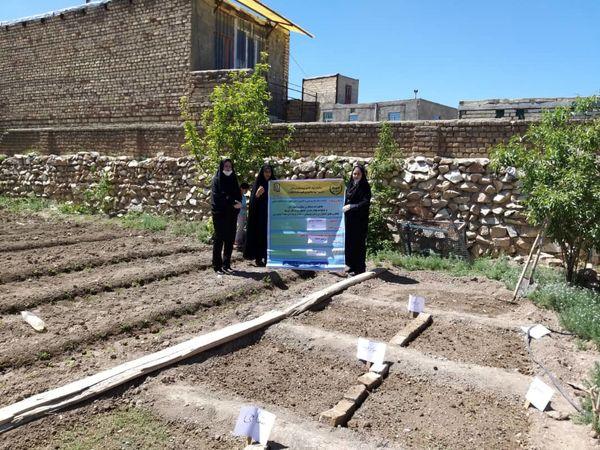 کسب مقام برتر سازمان جهاد کشاورزی استان لرستان در زمینه آموزش