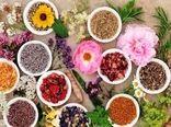 کِشت ۷۵ درصد از گونههای گیاهان دارویی ایران در استان اصفهان