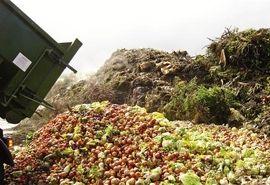 تولید محصولات فرآوری شده از ضایعات کشاورزی