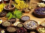 گیاهان دارویی ظرفیتی عظیم برای تحقق جهش تولید