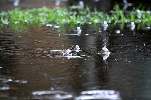 توصیههای هواشناسی کشاورزی تا هفتم اردیبهشتماه 97 به تفکیک استان ها