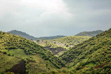 بهره برداری ۲۰ طرح منابع طبیعی اصفهان آغاز شد