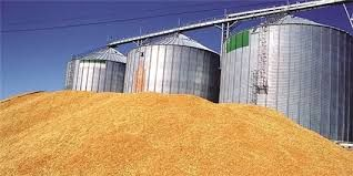 کشاورزان گندم خود را به مراکز خرید تحویل دهند