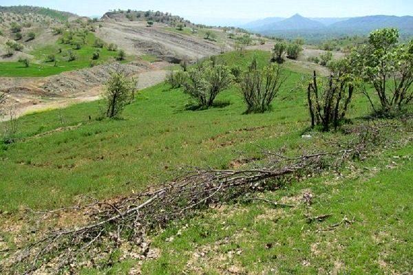 14پلاک از اراضی کشاورزی شهرستان البرز تثبیت مالکیت شد