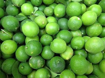 تولید بیش از 2 هزارتن لیمو ترش در شهرستان مهر