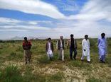 مبارزه با ملخ صحرایی در  108 هزار هکتار اراضی کشور انجام شده است