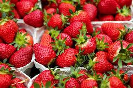 استفاده از هوش مصنوعی در برداشت توتفرنگی