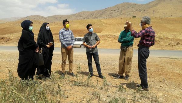 لزوم پیگیری برای رونق کشت کلزا درشهرستان اردل