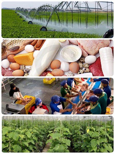 بهره برداری از 46 پروژه بخش کشاورزی استان یزد به مناسبت هفته جهاد کشاورزی
