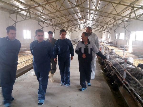 لزوم حمایت همه جانبه از تولید کنندگان وسرمایه گذاران بخش کشاورزی