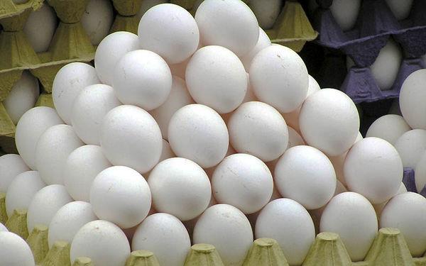 افزایش سرانه مصرف تخم مرغ در کشور