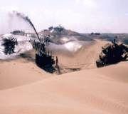 1275 هکتار پروژههای بیابانزدایی در شهرستان میامی اجرا شد