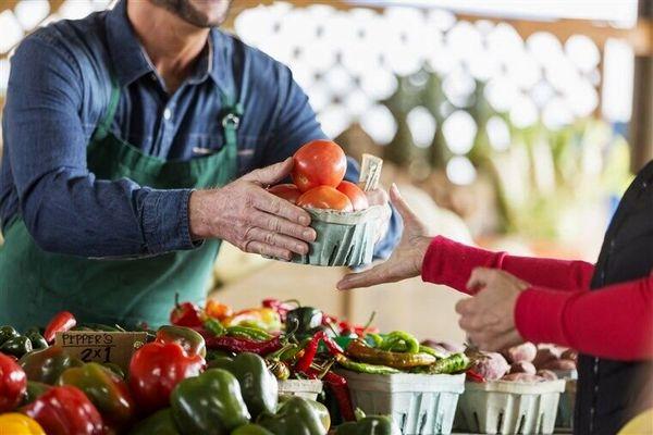 4 محصول کشاورزی استان قزوین ؛ گواهی استاندارد دریافت کردند