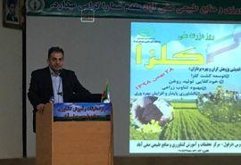 تعادل زراعی و افزایش تولید روغن ارمغان کشت کلزا در خوزستان