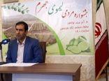 برگزاری جشنواره مردمی لیموی جهرم