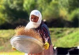 تشکیل 9 صندوق اعتباری خرد زنان روستایی در شهرستان اردبیل