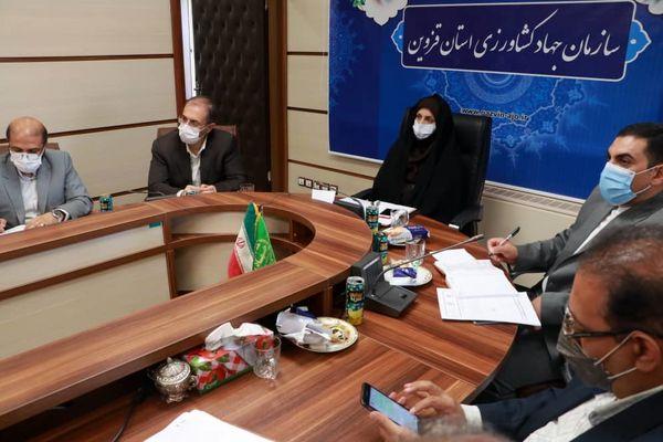 قزوین به عنوان استان پیشرو در تعیین قیمت کشمش تعیین شده است