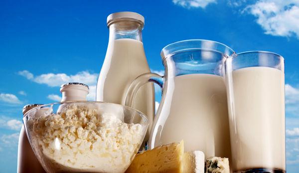 رشد 268 درصدی تولید شیرخام طی 4 دهه + اینفوگرافیک