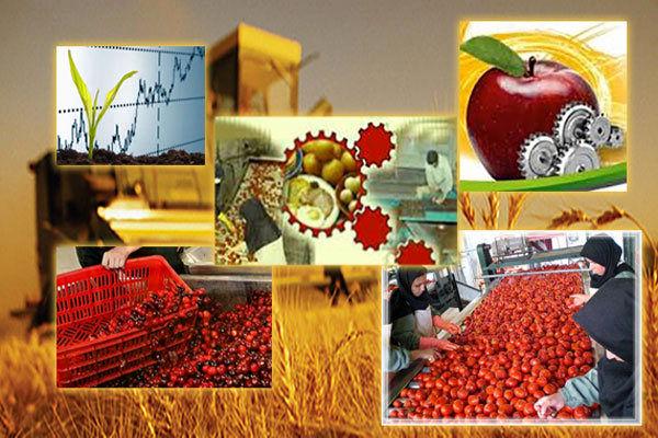 افزایش ارزش افزوده محصولات با توسعه صنایع تبدیلی