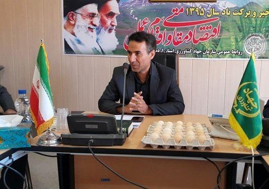 سهم ناچیز مصرف تخم مرغ در استان اردبیل / «معجون سلامتی» شعار جهانی امسال روز جهانی تخم مرغ