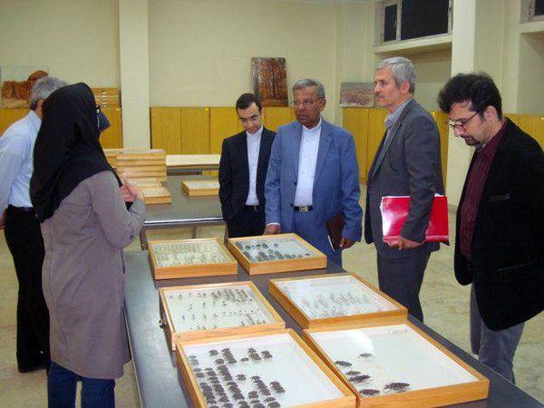 بازدید فرستاده ویژه رئیس جمهور سورینام از مؤسسه تحقیقات گیاهپزشکی کشور
