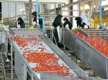 صدور پروانه تاسیس ۵ واحد تولیدی در زمینه صنایع غذایی و تبدیلی بخش کشاورزی