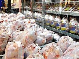 تمهیدات لازم برای کنترل قیمت مرغ اتخاذ شد
