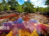 رودخانه «پنج رنگ» در کشور کلمبیا