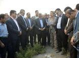 وزیر جهاد کشاورزی از طرح مرتعداری در شهرستان اقلید بازدید کرد