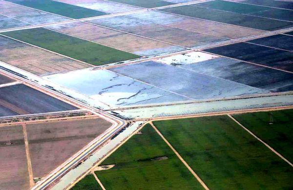 سیلاب ۹۵ درصد اراضی کشاورزی استان های سیل زده تخلیه شد