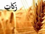 تشکیل شورای برنامه ریزی  زکات با محوریت ستاد راهبردی و عملیاتی  زکات در تعاون روستایی  استان کرمان