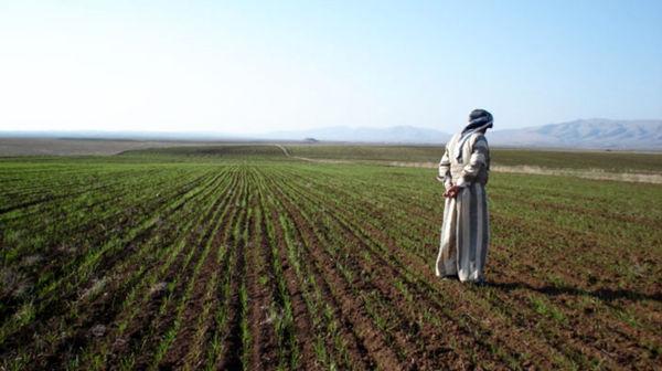 کشاورزان به کشاورزی هوشمند مبتنی (منطبق) بر آب و هوا روی آوردند