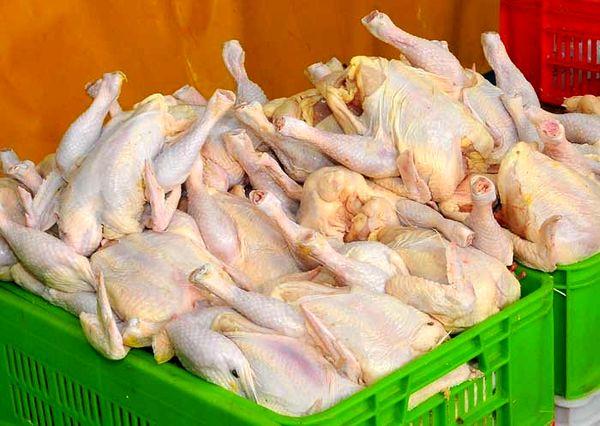 نرخ مصوب مرغ گرم ۱۰ هزار تومان است