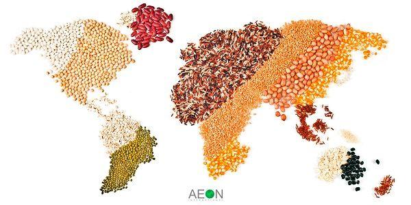 صادرات 8 ماهه سال در حوزه کشاورزی؛ 4 میلیارد و ۹۰۰ میلیون دلار/ رشد 31 درصدی صادرات لبنیات