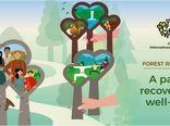 انتخاب شعار «بازسازی اکوسیستمهای جنگلی راهی به سوی بازیابی حیات و رفاه» در سال 2021