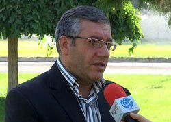 خرید تضمینی بیش از 9 هزار تن دانه روغنی کلزا در آذربایجانغربی
