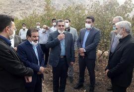 ایذه کلکسیونی از باغات در استان خوزستان