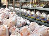 فارس رکورد عرضه روزانه مرغ را شکست
