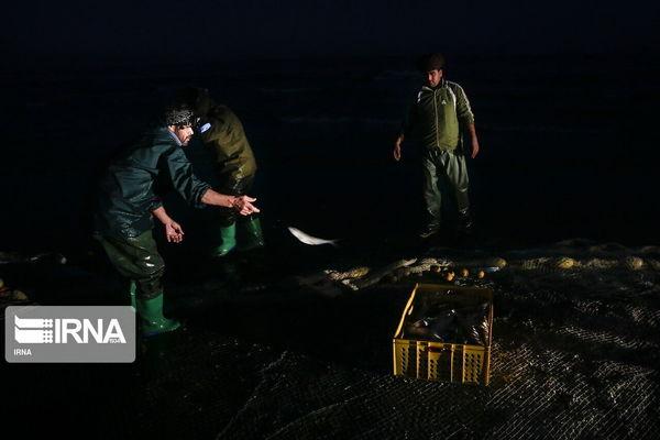 حمله به گشت تعاونی صیادان سقز ۲ مجروح برجا گذاشت