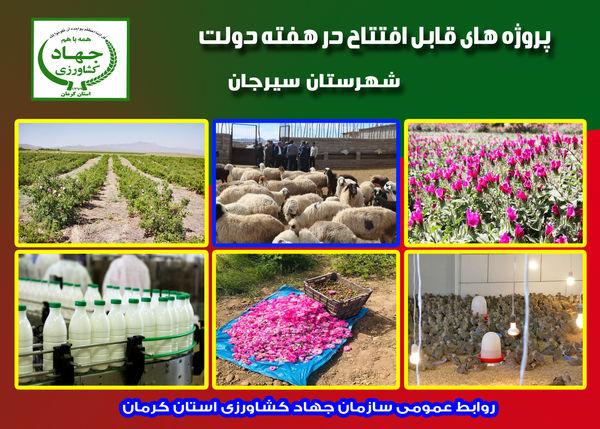 بهره برداری  از 8 طرح کشاورزی و دامپروری در شهرستان سیرجان در هفته دولت