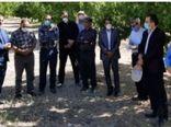 بازدید کارشناسان سازمان حفظ نباتات و مؤسسه تحقیقات گیاهپزشکی کشور از باغات زردآلوی روستاهای مروک و دو دختران شهرستان دورود