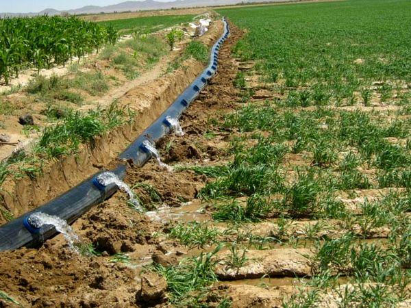 اجرای سامانه آبیاری نوین در 624 هکتار از اراضی شهرستان درمیان
