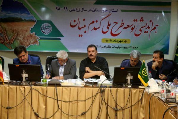 طرح ملی گندم بنیان در اولویت کار مراکز تحقیقات استان خوزستان است