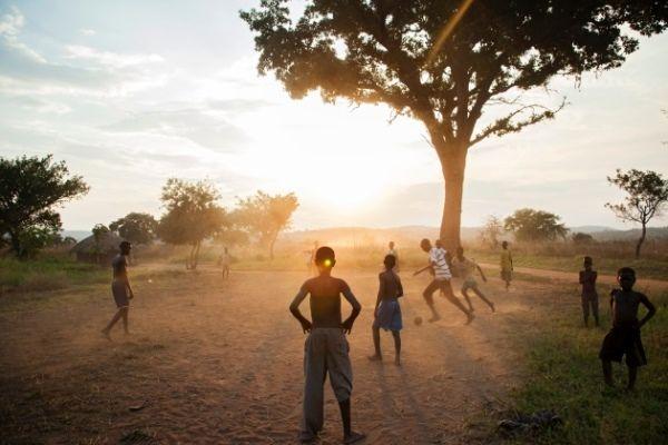 پرداخت پول به مردم برای حفظ درختان صرفه اقتصادی دارد