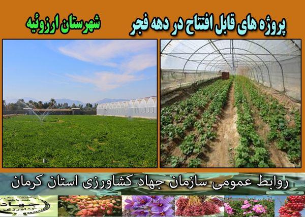 بهرهبرداری از 10 طرح گلخانه و سیستم آبیاری نوین در شهرستان ارزوئیه