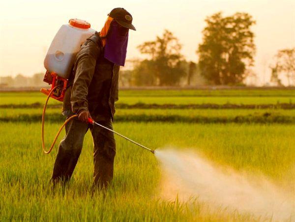 توزیع کود مورد نیاز کشاورزان در خراسان جنوبی