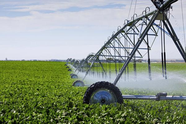 مصرف 90 درصدی آب در کشاورزی غلط فاحش است