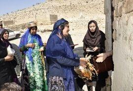 توزیع نیمچه مرغ  بومی در مناطق عشایری فارس