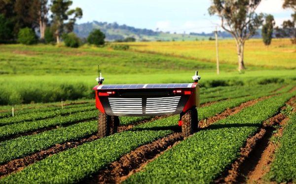 شتاب در صنعت کشاورزی با ورود استارتآپها
